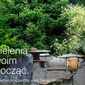 Jak się zasłonić – jak zasłonić blok – ściana zielona z drzew – wysokie, duże drzewa, krzewy, tuje